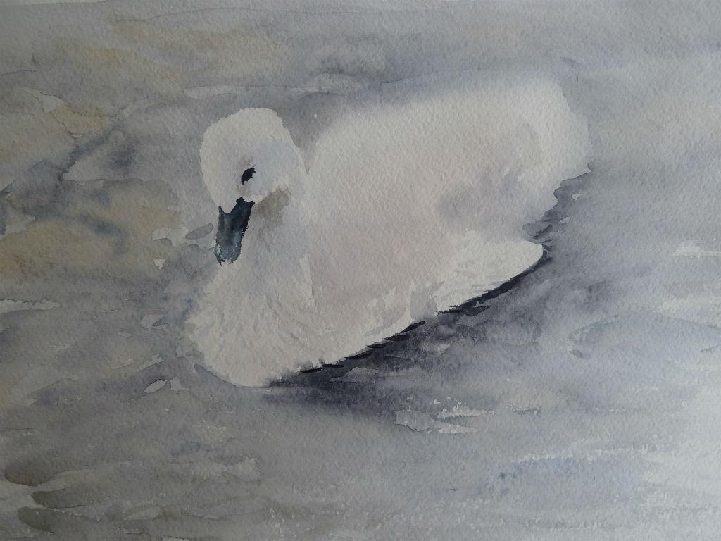 Лебеденок акварель